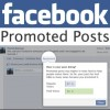 "How to Use Facebook's ""Promoted Posts"" to Generate Leads"